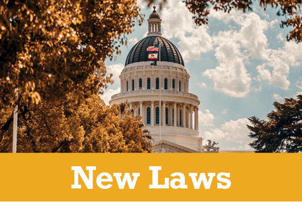 New Laws 1